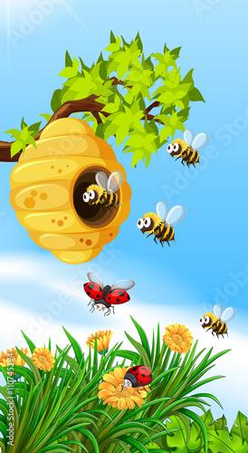 Foto op Aluminium Blauw Bees and bugs flying around beehive