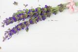 Lavender flowers spa