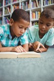Little boys reading a book