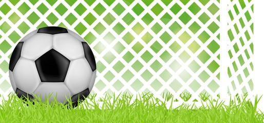 Fußballwiese mit Fußballtor