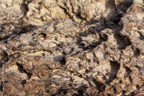 Close up of texture on a rock
