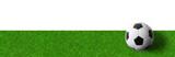 Rasen mit Fußball - Panoramaformat - 110880434