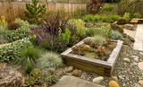 Beautiful backyard - 110902218