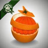 Juicy orange. Skin spirally cut. Organic food logo. Vector illustration.