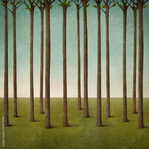 Fototapeta Pastel background texture with tree trunks and field in forest