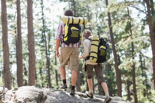 Rear view of couple walking on rock in forest