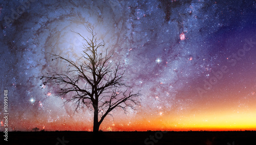 Foto op Plexiglas Draken Lonely tree silhouette in alien world with bright galaxy vortex in the sky. Elements of this image are furnished by NASA