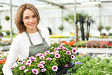Fototapety Young attractive woman working at the plants nursery