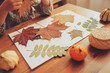 preparations for autumn craft with kids. Herbarium from dried leaves. Learning children at home, fall nature collage.