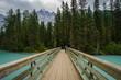Teenage Girl on Foot Bridge along the Berg Lake Trail, Mount Rob