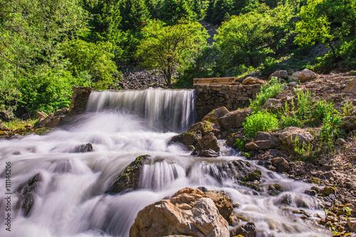 meşe ormanında kaynağından doğal şelale Poster