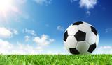 Fototapeta Sport - Ball On Grass Of Stadium  © Romolo Tavani