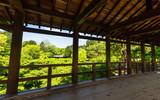 京都 東福寺 通天橋から眺める新緑
