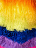 Close up of colorful fur