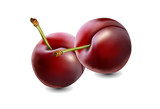 Plums with stem  with shadow on white background
