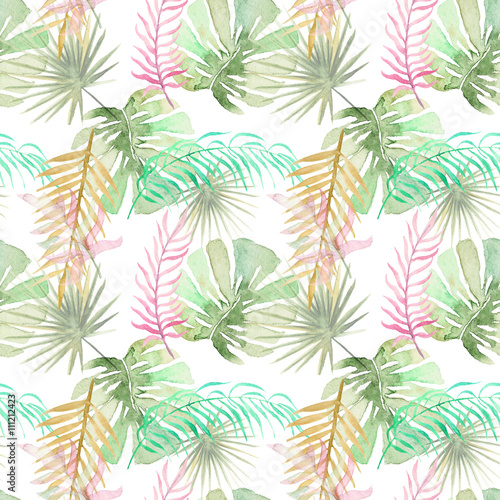 tropical palm leaves - 111212423