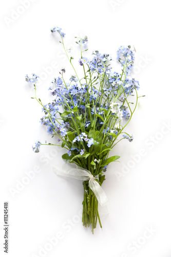 Forget-me-not blue forest flowers bouquet