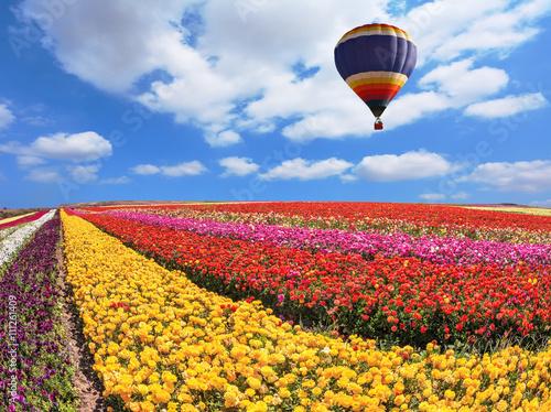 Deurstickers Ballon Flying big balloon