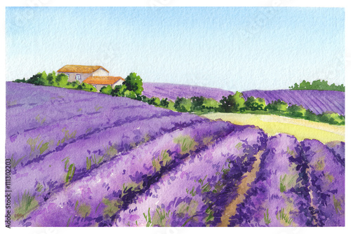 Lavender field with rural house in Provence, France. Watercolor © zzorik