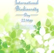 Biodiversity international day background with fresh green leaves