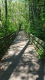 Wanderweg Holzbrücke