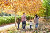 Fototapety family walking in an autumn park