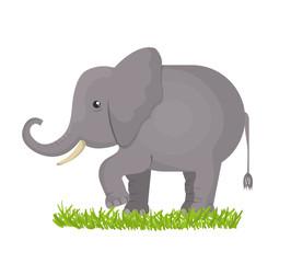 elephant isolated design