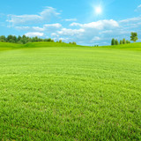 Green spring valley, beauty seasonal backgrounds