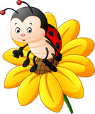 Cartoon ladybug on the sun flower
