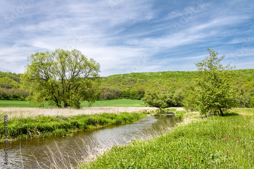 Fototapeta Spring landscape with green meadow, river and trees