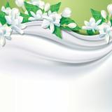 Vector white fabric (silk) background with jasmine flower.