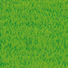 Green grass seamless pattern