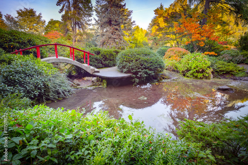 Fototapeta Red bridge in japanese green park in autumn time. Seattle.