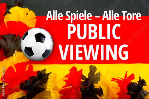 Public Viewing - 111533096