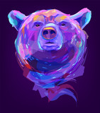 The cute colored bear head