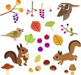 秋の木の実と小動物のイラストセット
