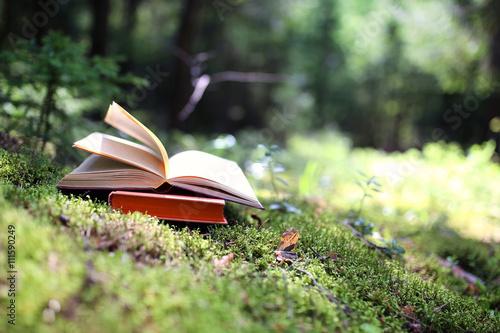 Open book outdoor Poster