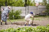 grandmother with her grandson dig garden