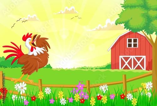 Fotobehang Boerderij cute rooster crowing in the farm fence