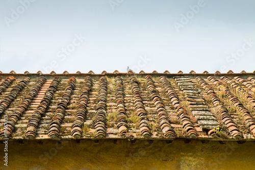 Abandonnée toit (Toscane - Italie) Poster