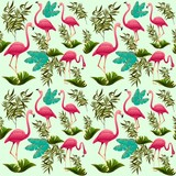 Pink Flamingos Pattern Vector