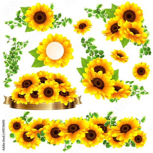 向日葵の綺麗なフレーム