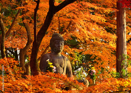 Poster Oranje eclat Buddha surrounded by autumn leaves, Kyoto Japan.