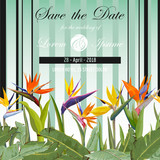 Save the Date. Wedding Card. Tropical Flowers. Tropical Card.