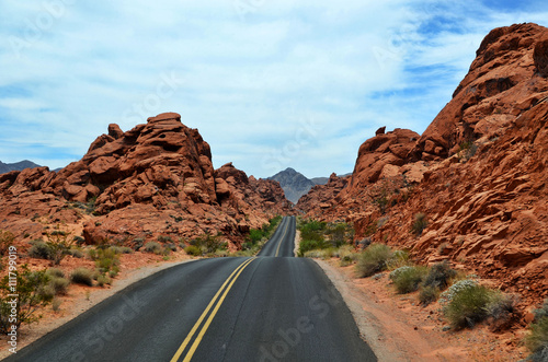 Poster Strada nel deserto