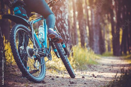 Poster Cycliste VTT d'équitation dans la forêt