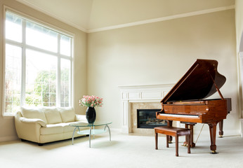 Bright daylight living room with grand piano