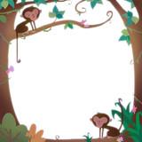 marco con monos en la selva