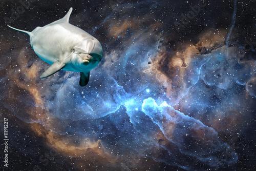 dauphin-dans-le-fond-de-l-39-univers-de-l-39-espace-vous-regarde