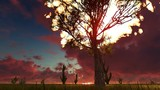 Tree burning in an open field at sunrise